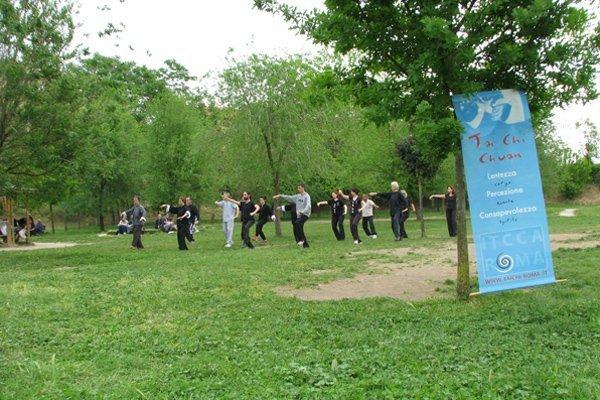 World Tai chi day 2014
