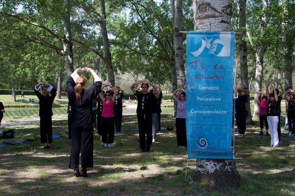 World Tai chi day 2012