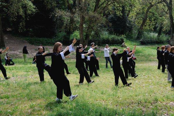 Movimento Suonare il pipa della forma di tai chi